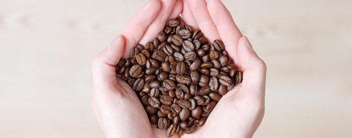 תהליך ייצור הקפה